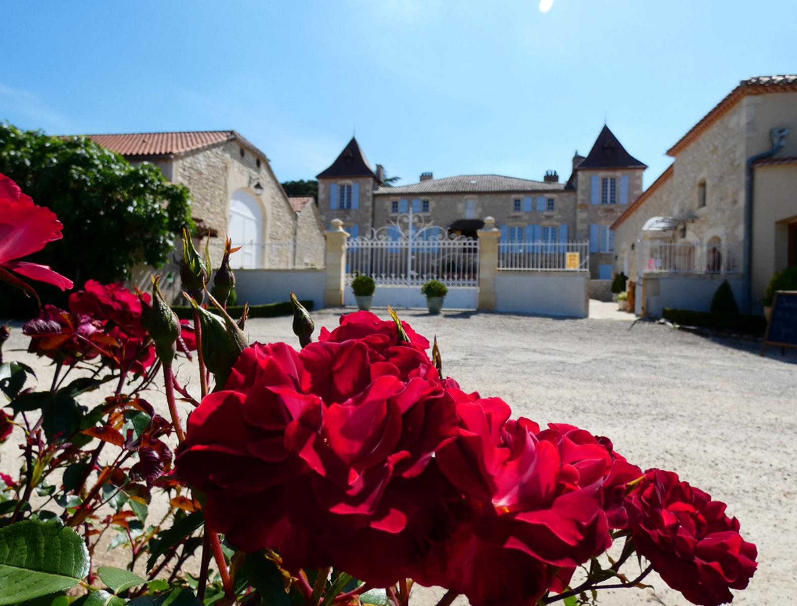 Chateau de Gaudou - Vignoble AOC Cahors